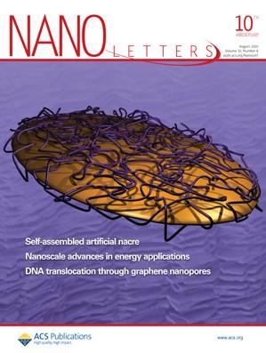Nano Letters: Volume 10, Issue 8