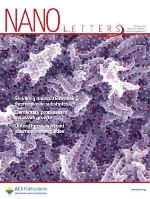 Nano Letters: Volume 11, Issue 2