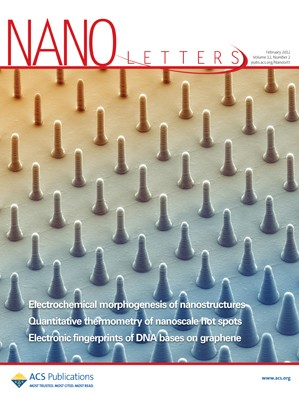 Nano Letters: Volume 12, Issue 2