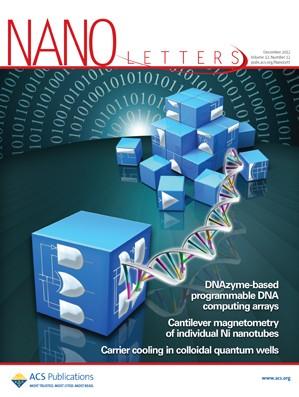 Nano Letters: Volume 12, Issue 12