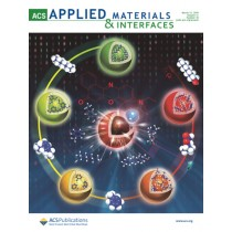 ACS Applied Materials & Interfaces: Volume 11, Issue 10