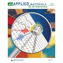 ACS Applied Materials & Interfaces: Volume 11, Issue 13