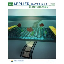 ACS Applied Materials & Interfaces: Volume 11, Issue 15