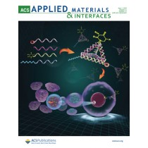 ACS Applied Materials & Interfaces: Volume 11, Issue 17