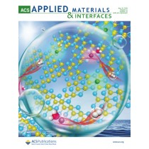 ACS Applied Materials & Interfaces: Volume 11, Issue 19