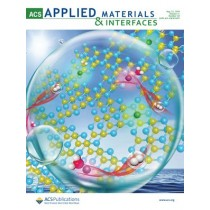 ACS Applied Materials & Interfaces: Volume 11, Issue 20
