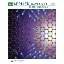 ACS Applied Materials & Interfaces: Volume 11, Issue 22