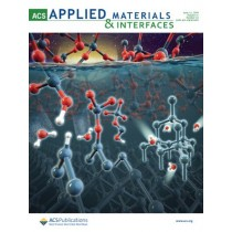 ACS Applied Materials & Interfaces: Volume 11, Issue 23