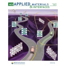 ACS Applied Materials & Interfaces: Volume 11, Issue 25