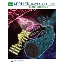 ACS Applied Materials & Interfaces: Volume 11, Issue 29