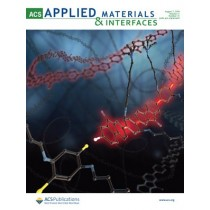 ACS Applied Materials & Interfaces: Volume 11, Issue 31