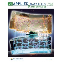 ACS Applied Materials & Interfaces: Volume 11, Issue 43