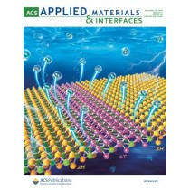 ACS Applied Materials & Interfaces: Volume 11, Issue 46