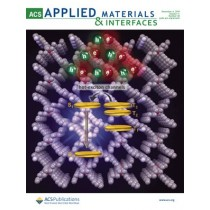ACS Applied Materials & Interfaces: Volume 11, Issue 48