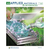 ACS Applied Materials & Interfaces: Volume 11, Issue 49