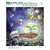 ACS Applied Materials & Interfaces: Volume 11, Issue 6