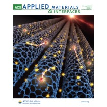 ACS Applied Materials & Interfaces: Volume 11, Issue 7