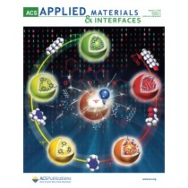 ACS Applied Materials & Interfaces: Volume 11, Issue 9