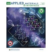 ACS Applied Materials & Interfaces: Volume 12, Issue 12