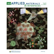 ACS Applied Materials & Interfaces: Volume 12, Issue 13