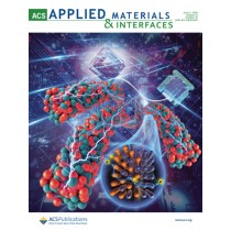ACS Applied Materials & Interfaces: Volume 12, Issue 22