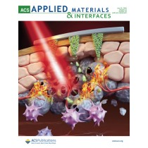 ACS Applied Materials & Interfaces: Volume 12, Issue 30