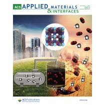 ACS Applied Materials & Interfaces: Volume 12, Issue 45