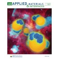 ACS Applied Materials & Interfaces: Volume 12, Issue 47