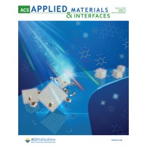 ACS Applied Materials & Interfaces: Volume 13, Issue 12