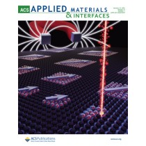 ACS Applied Materials & Interfaces: Volume 13, Issue 1