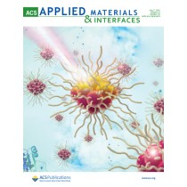 ACS Applied Materials & Interfaces: Volume 13, Issue 26