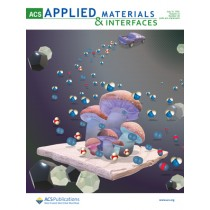 ACS Applied Materials & Interfaces: Volume 13, Issue 28