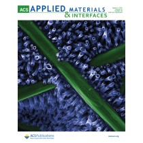 ACS Applied Materials & Interfaces: Volume 13, Issue 30