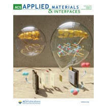 ACS Applied Materials & Interfaces: Volume 13, Issue 32