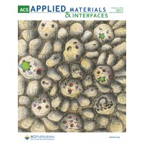 ACS Applied Materials & Interfaces: Volume 13, Issue 41