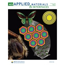 ACS Applied Materials & Interfaces: Volume 13, Issue 4