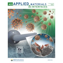 ACS Applied Materials & Interfaces: Volume 13, Issue 5