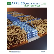 ACS Applied Materials & Interfaces: Volume 13, Issue 8