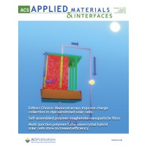 ACS Applied Materials & Interfaces: Volume 6, Issue 20