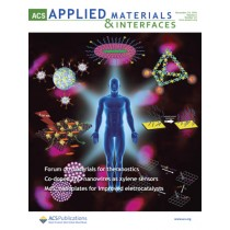 ACS Applied Materials & Interfaces: Volume 6, Issue 24