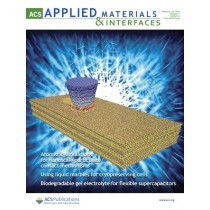 ACS Applied Materials & Interfaces: Volume 7, Issue 6