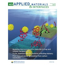 ACS Applied Materials and Interfaces: Volume 8, Issue 44