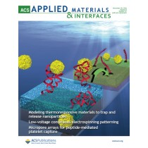 ACS Applied Materials and Interfaces: Volume 8, Issue 47
