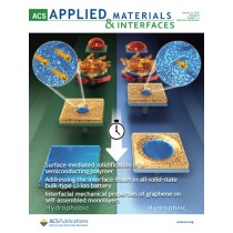 ACS Applied Materials and Interfaces: Volume 9, Issue 11