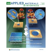 ACS Applied Materials and Interfaces: Volume 9, Issue 12