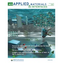 ACS Applied Materials and Interfaces: Volume 9, Issue 5
