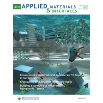 ACS Applied Materials and Interfaces: Volume 9, Issue 6