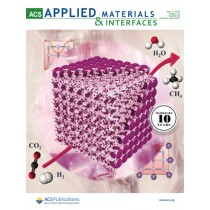 ACS Applied Materials and Interfaces: Volume 10, Issue 20