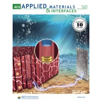 ACS Applied Materials and Interfaces: Volume 10, Issue 27