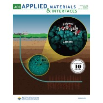 ACS Applied Materials and Interfaces: Volume 10, Issue 3